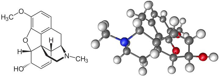 Молекула кодеина